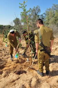 Tu-Bishvat-Israeli soldiers plants tree in Tu Bishvat in the Western Negev- NES Mobile- EUO